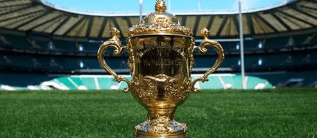 On se prépare à la coupe du monde de rugby chez Decitre